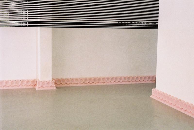 Border, a sugar flower plinth